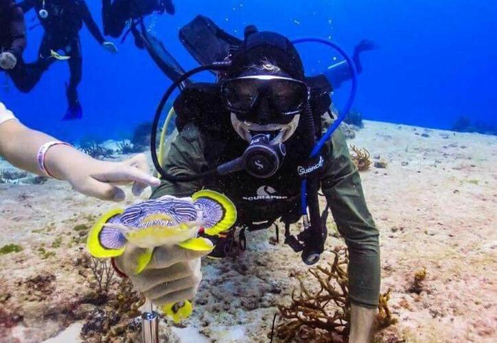 La imagen en la que aparecía el buzo, fue duramente criticada por submarinistas. (Redacción)