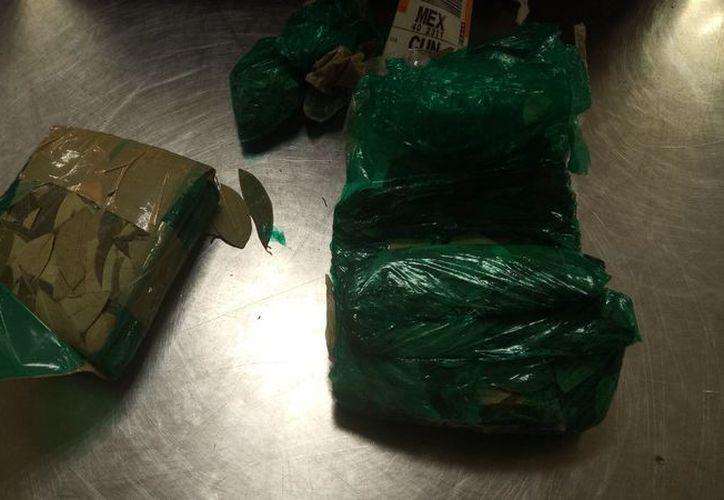El material que fue detectado dentro de la maleta del pasajero. (Redacción/SIPSE)
