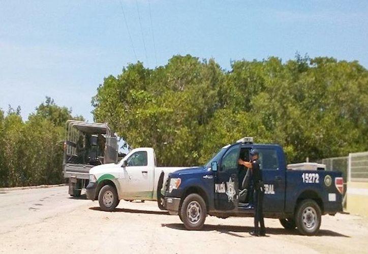 Elementos militares y federales brindan mayor seguridad para el litoral yucateco como medida de prevención. (Milenio Novedades)