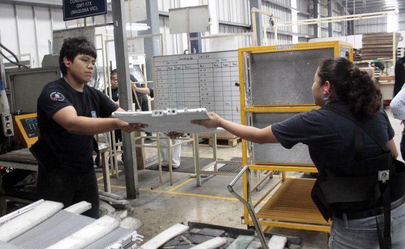 La producción de la empresa Wood Genix está pensada para el mercado de las exportaciones. (Archivo/Sipse)