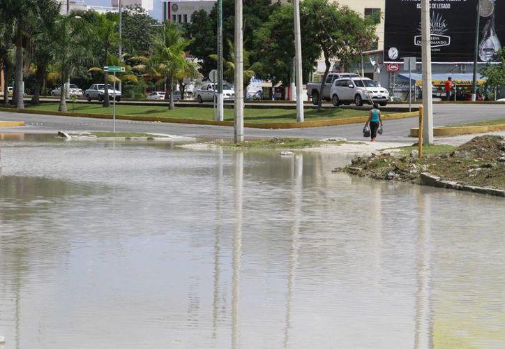 La laguna de agua estancada se ubica cerca de la zona industrial, y en algunos puntos crece la hierba y se acumula basura. (Tomás Álvarez/SIPSE)