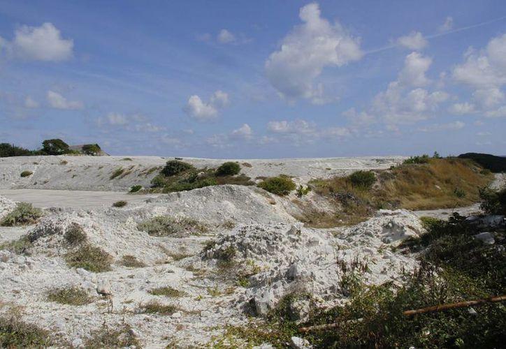 El predio mide aproximadamente seis mil metros cuadrados. (Israel Leal/SIPSE)