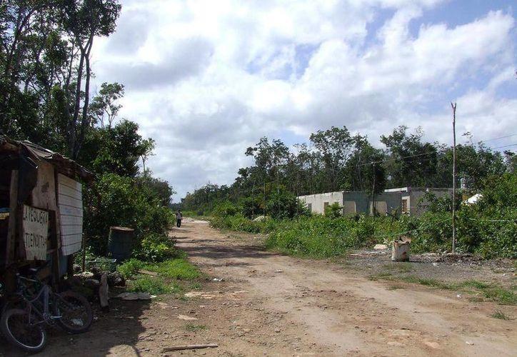 Poco a poco, las familias venden sus terrenos a particulares, avecindados o desarrolladoras. (Rossy López/SIPSE)
