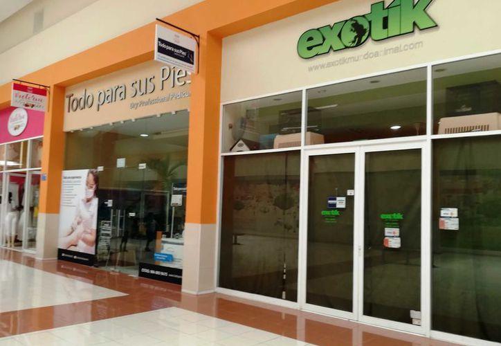 La tienda inculpada se denomina Exotik y está ubicado al interior de Centro Maya. (Octavio Martínez/SIPSE)