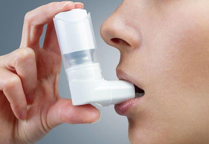 El asma se puede prevenir con el control de la humedad en el ambiente. (Gob.mx)