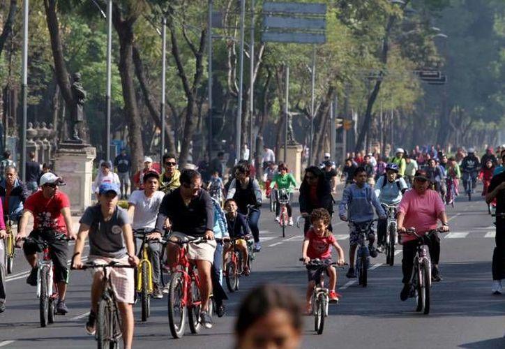 En el DF, se realizan diariamente unos 200 mil viajes en bicicleta. (Archivo/Notimex)