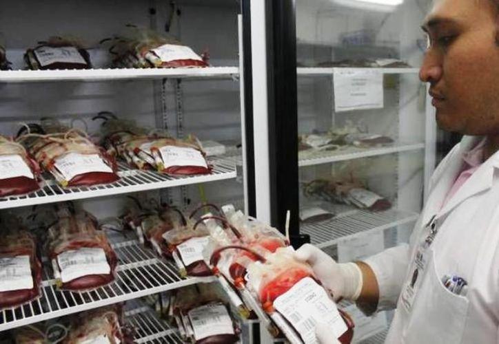 Los médicos podrán suministrar las sangre artificial sin importar el tipo de sangre a la que éstos pertenezcan. (Archivo/Sipse)