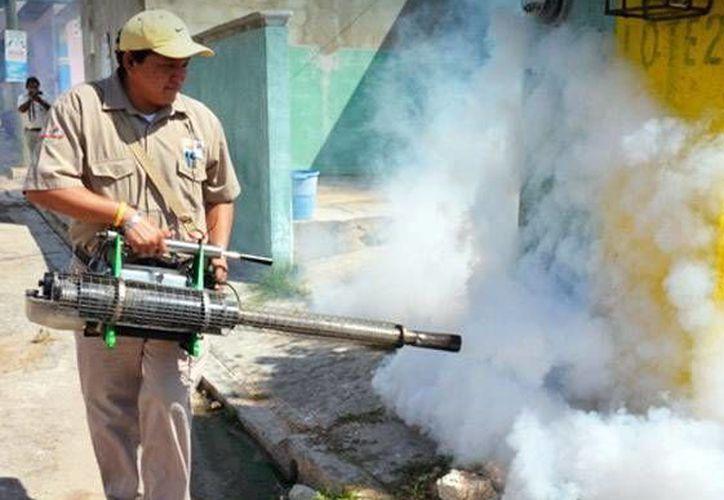 En la foto, trabajos de abatización y fumigación contra el mosco transmisor del dengue y chikungunya. En México se podría presentar en 2016 la vacuna contra el primera padecimiento mencionado. (SIPSE)