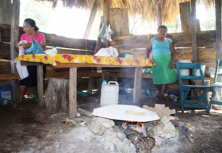 Las comunidades rurales aledañas a Playa del Carmen, son las más vulnerables a las bajas temperaturas. (Octavio Martínez/SIPSE)