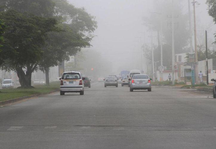 Pronostican bajas temperaturas para este fin de semana en Quintana Roo. (Ángel Castilla/SIPSE)