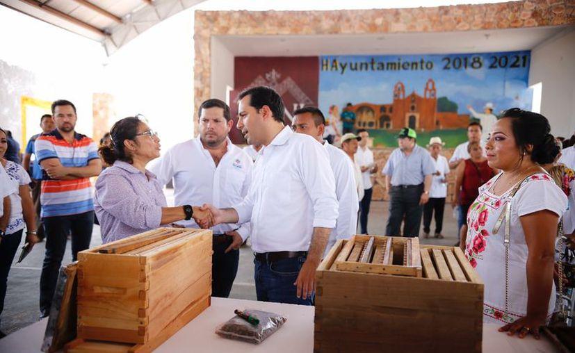 Como parte de las acciones,  Mauricio Vila otorgó 140 cajas de abejas meliponas y 60 cajas de cera. (Novedades Yucatán)