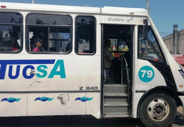 Preparan licitación de transporte público en Playa del Carmen - Sipse.com