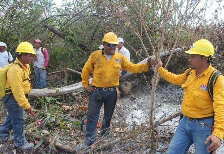 Brindan pláticas sobre extensionismo forestal para concientizar a los productores sobre acciones para prevenir incendios forestales. (Contexto/SIPSE)