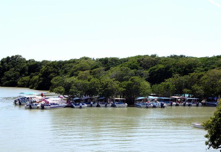 Uno de los proyectos se encuentra en Río Lagartos. (Milenio Novedades)