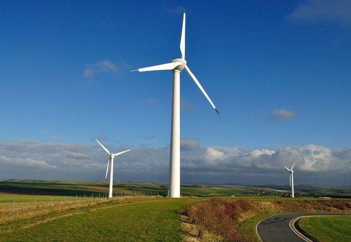 En casi todos los países de la OCDE prácticamente 50 % de la meta nacional de energías renovables depende de la eólica. (evwind.com)