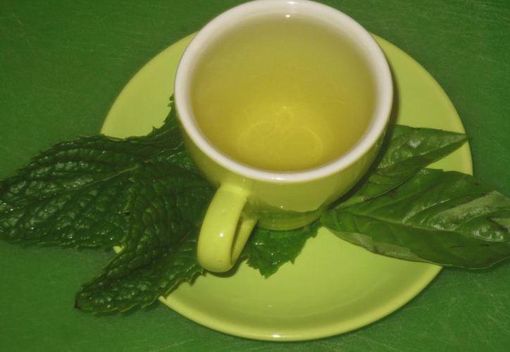 Las hojas de albahaca son un remedio contra la conjuntivitis.  (Imagen tomada de Youtube)
