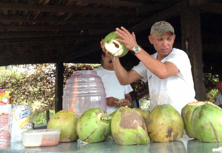"""La venta del coco y sus derivados es una de las actividades más comunes de Colima. En la imagen, Ramiro Iglesias, """"El Paisa"""", en su negocio. (Foto: Notimex)"""