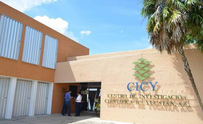 En Yucatán, más de 400 académicos pertenecen al Sistema Nacional de Investigadores. (Novedades Yucatán)