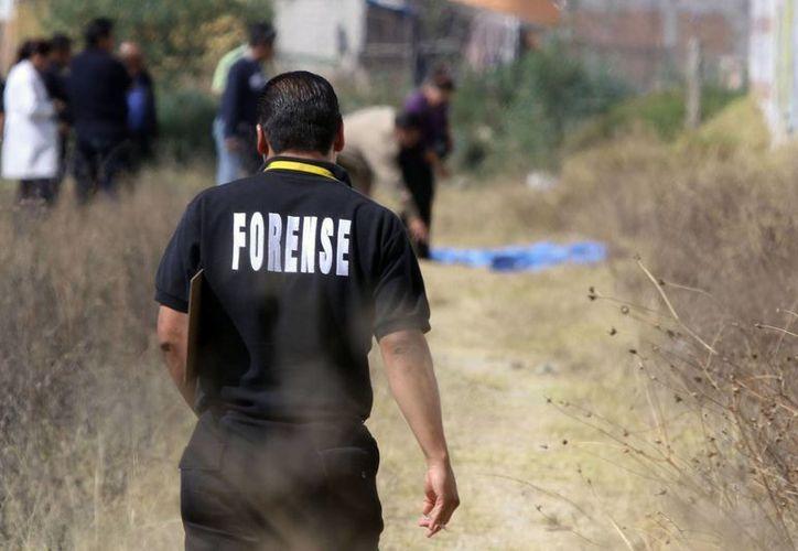 El cadáver fue localizado a un costado de una brecha en Tamándaro. (Archivo/SIPSE)