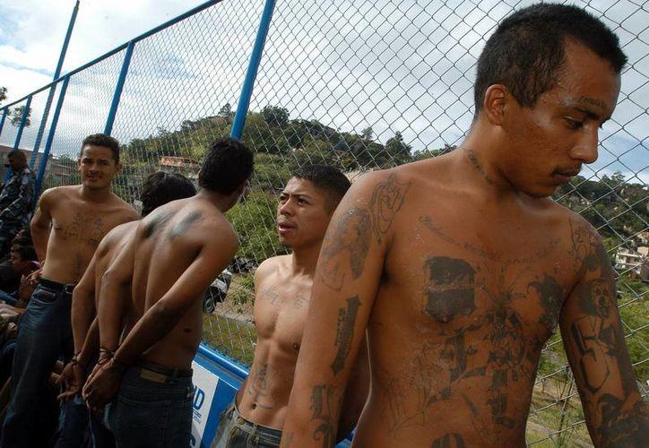 Miembros de las pandillas (Maras) esperana ser trasladados a la sede de la Dirección General de Investigación Criminal. (Archivo/EFE)