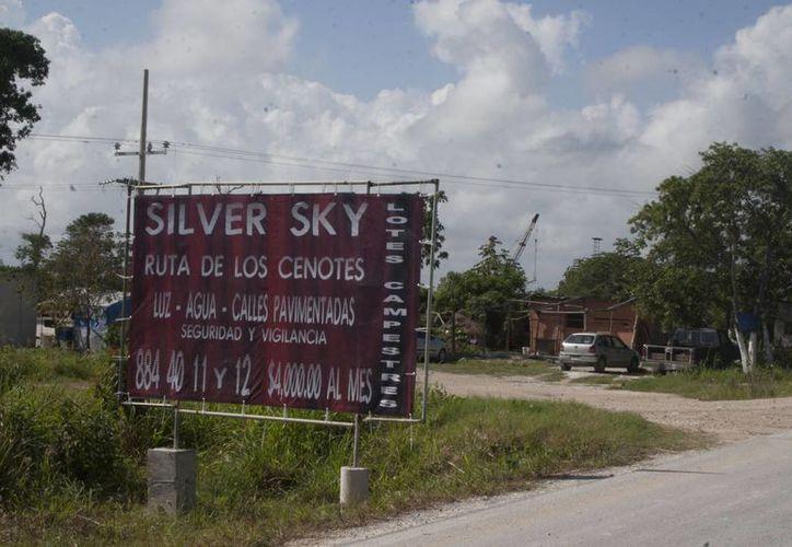 Se ubica en Puerto Morelos la Ruta de los Cenotes. (Israel Leal/SIPSE)