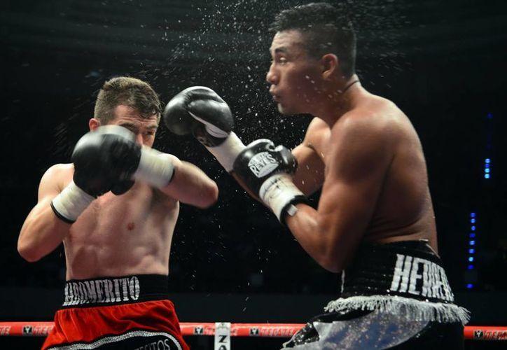 Espectacular intercambio de golpes entre Jorge Páez y Aarón Herrera. (Luis Pérez/SIPSE)