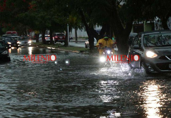 La tormenta tropical se ubicaba a unos 4,850 kilómetros al este de las costas de Quintana Roo. (Jorge Acosta/Milenio Novedades)