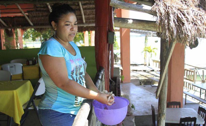 La restaurantera avienta la cáscara del camarón para alimentar al bagre. (Paloma Wong/SIPSE)
