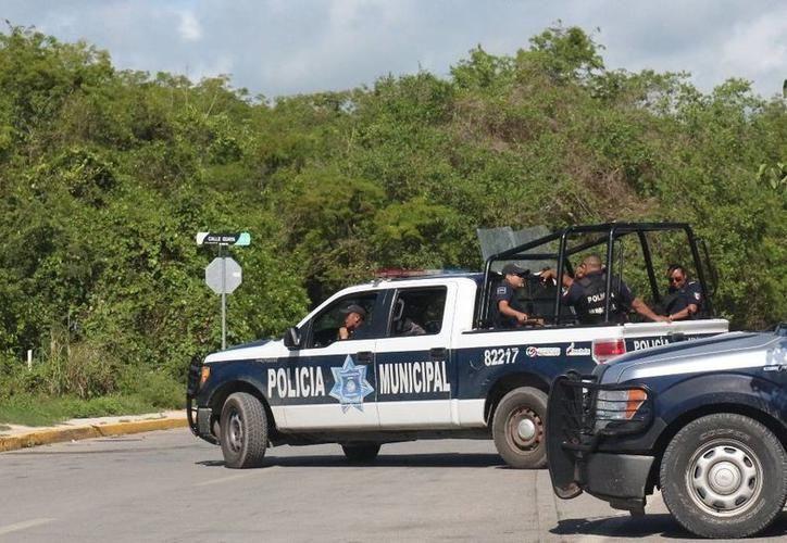 La policía tiene puesta su atención en la colonia Colosio y Villas del Sol de Playa del Carmen. (Archivo/SIPSE)