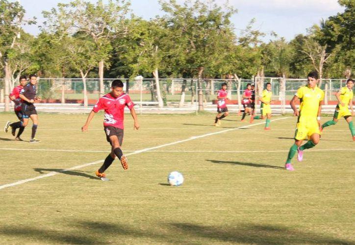 El modesto equipo de Mapaches de Campeche goleó al sublíder Venados de Yucatán. (Milenio Novedades)