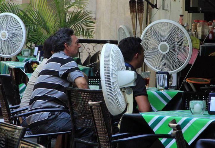 En esta época suelen usar con mayor frecuencia los ventiladores. (Milenio Novedades)