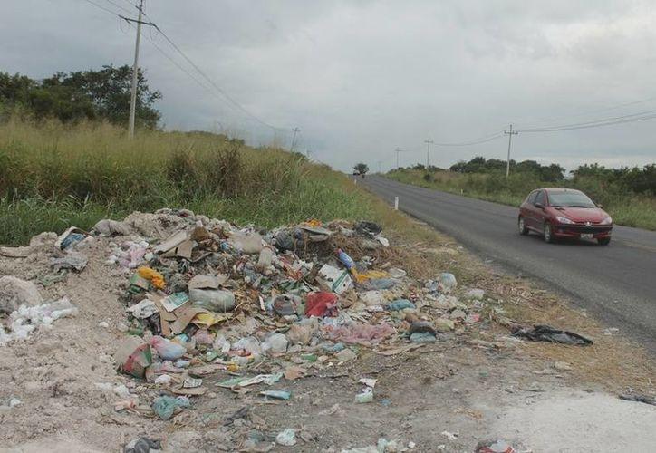 Aunque las áreas verdes son limpiadas constantemente, la gente vuelve a tirar sus desperdicios, haciendo caso omiso a los exhortos de las autoridades. (Edgardo Rodríguez/SIPSE)