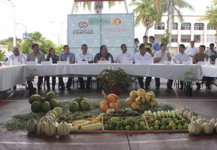 En la Feria de las Plantas, organizada por el Ayuntamiento capitalino, participan productores de la comunidad de Pucté, Javier Rojo Gómez y de Chetumal. (Harold Alcocer/SIPSE)