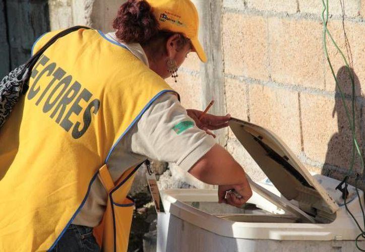 Un grupo de Vectores ha iniciado las campañas de nebulización. (Carlos Horta/SIPSE)