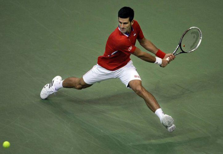 Djokovic, en torneo realizado en su país, ganó  7-5, 6-1, 6-4 a Stepanek. (Agencias)