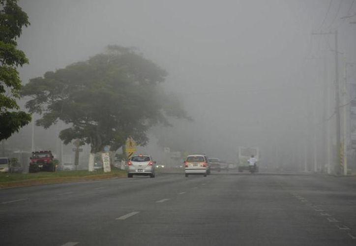 Yucatecos viven invierno fuera de lo acostumbrado. (Milenio Novedades)
