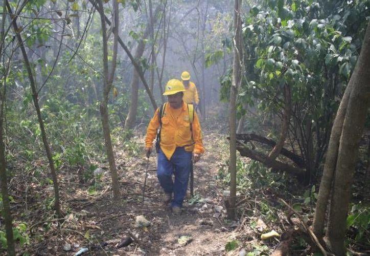 Concientizan a la población para disminuir incendios forestales. (Redacción/SIPSE)