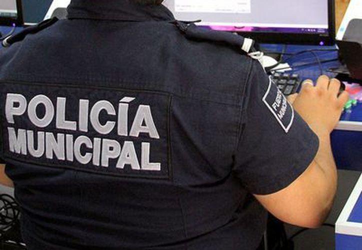 En lo transcurrido en el 2014 se han reportado 538 llamadas. (Adrián Monroy/SIPSE)