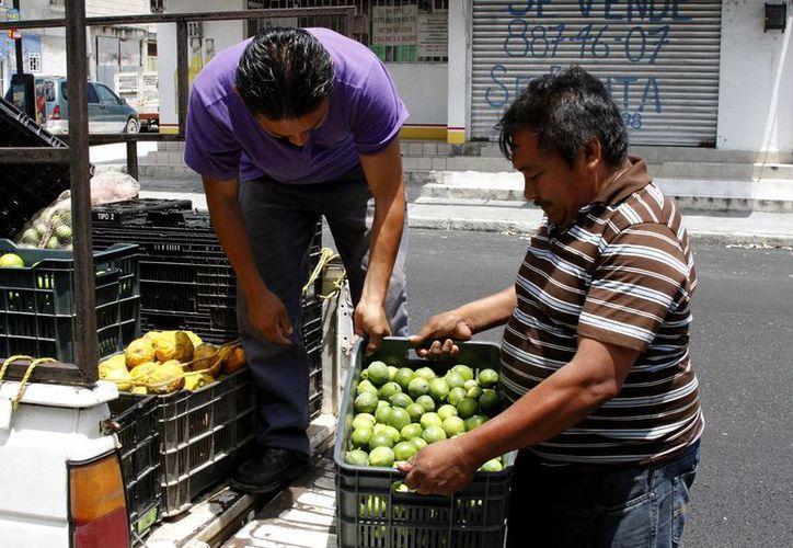 El precio del limón ha registrado fuerte aumento en mercados de Mérida. (Notimex)