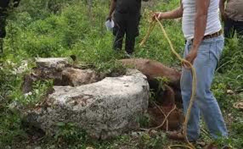 El cadáver fue rescatado por medio de un arnés y una camilla por los bomberos. (Foto: Archivo/Sipse)