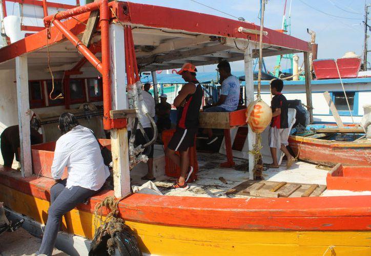 La flota permanece inactiva por riesgos económicos de las salidas.  (Gerardo Keb/Novedades Yucatán)