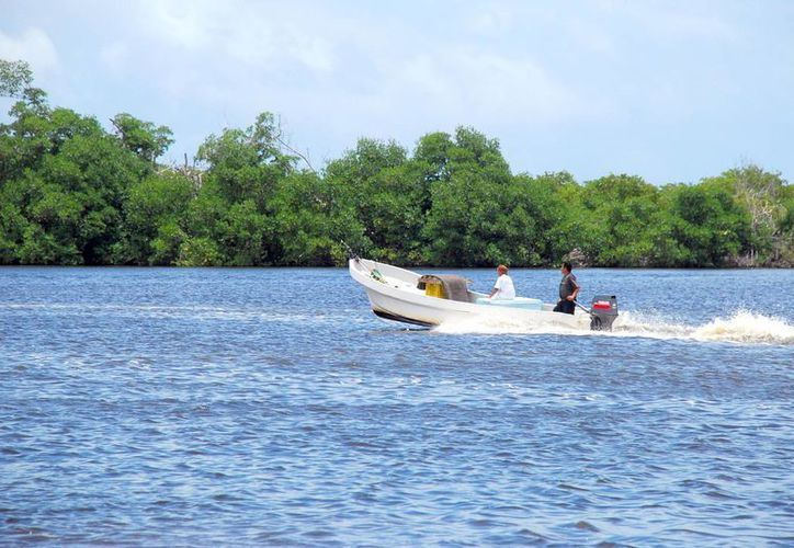 El próximo domingo familias cancunenses festejarán el Día Internacional del Medio Ambiente. (Tomás  Álvarez/SIPSE)