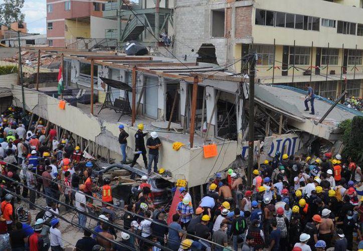 Dadas las condiciones y la conmoción que se vive en el país tras el sismo,  atletas buscan aportar su granito de arena. (Televisa News)