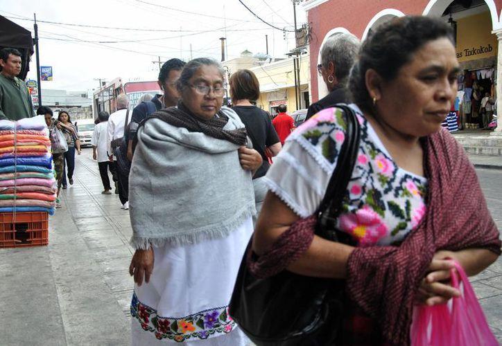 La 'heladez' ya se siente en Mérida desde este viernes. (Notimex)