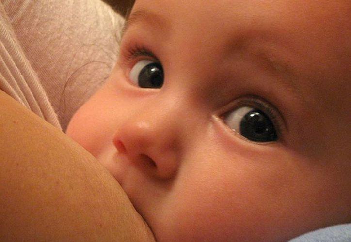 La leche materna es el primer alimento y el más importante para el crecimiento del infante. (bebesalud.blogspot.com)