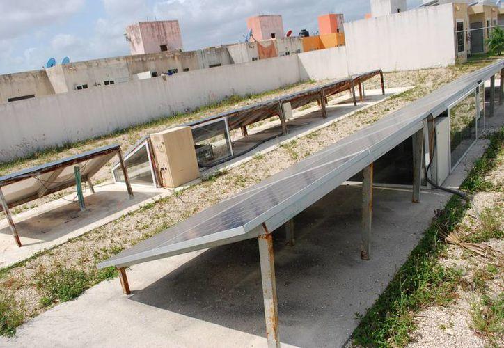 Olvidadas, inservibles y oxidadas se encuentran las celdas solares. (Tomás Álvarez/SIPSE)