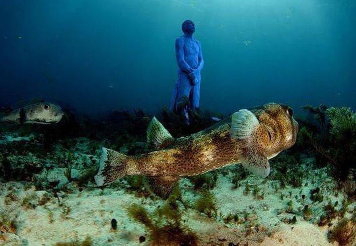 Los proyectos que planean para Quintana Roo son el acuario en Cozumel, Laguna Holbox y Blue Lagoon. (Israel Leal/SIPSE).