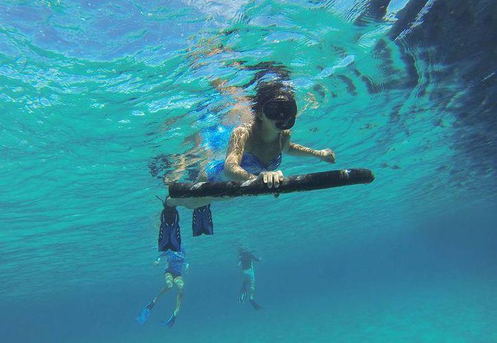 El 29 de septiembre es el Día Mundial de los Mares. (Redacción/SIPSE)
