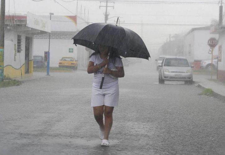 Desde que comenzó el año, en Yucatán ha precipitado 973.8 milímetros de manera acumulada, cuando el promedio histórico de lluvia para Yucatán es de mil 6.8 milímetros. (Milenio Novedades)