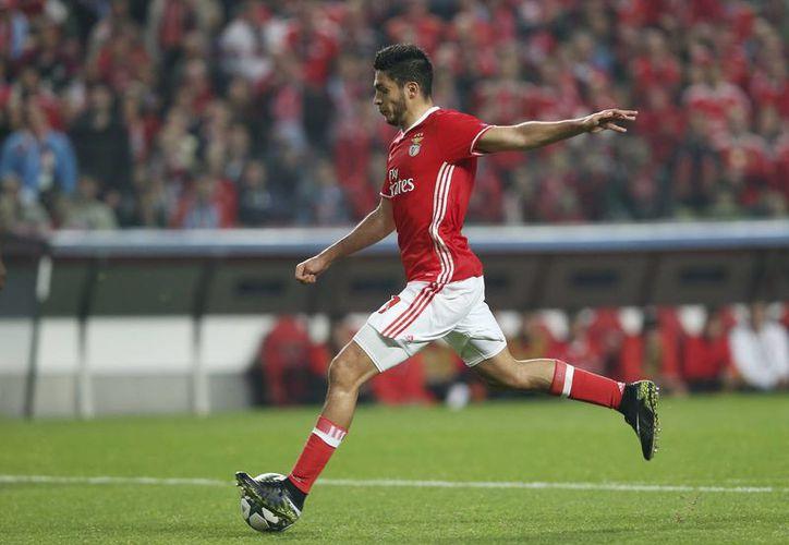 Este miércoles se juega la última jornada de la fase de grupos de la Liga de Campeones de Europa. En la foto, el mexicano Raúl Jiménez al anotar su gol en la derrota del Benfica contra Napoli. (AP)